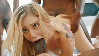 Platinum-Blonde's cock-squeezing labia pummeled firm off out of one's mind phat dark-hued schlongs